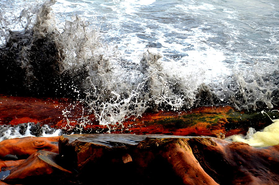 Splash On The Wood Photograph  - Splash On The Wood Fine Art Print