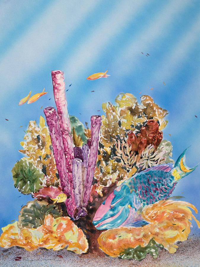 Spotlight Parrotfish Painting