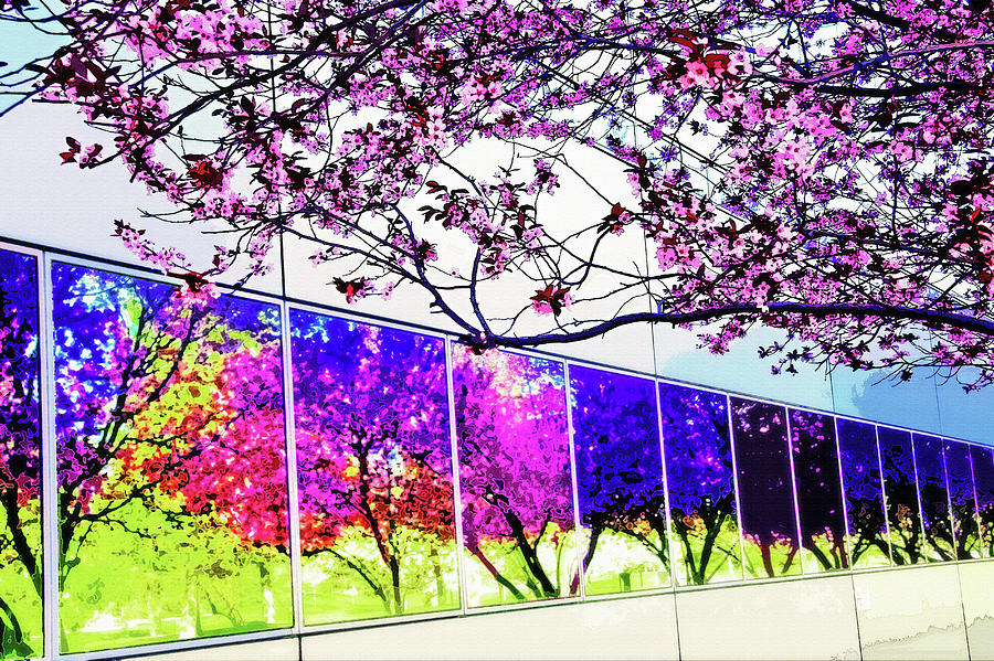 Spring Architectural Abstract Photograph
