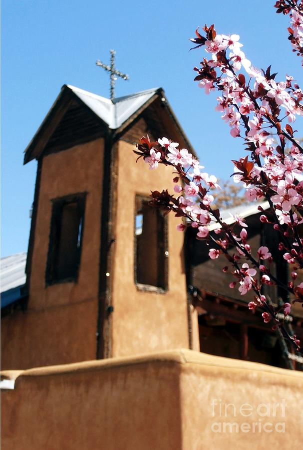 Spring At Chimayo Photograph  - Spring At Chimayo Fine Art Print