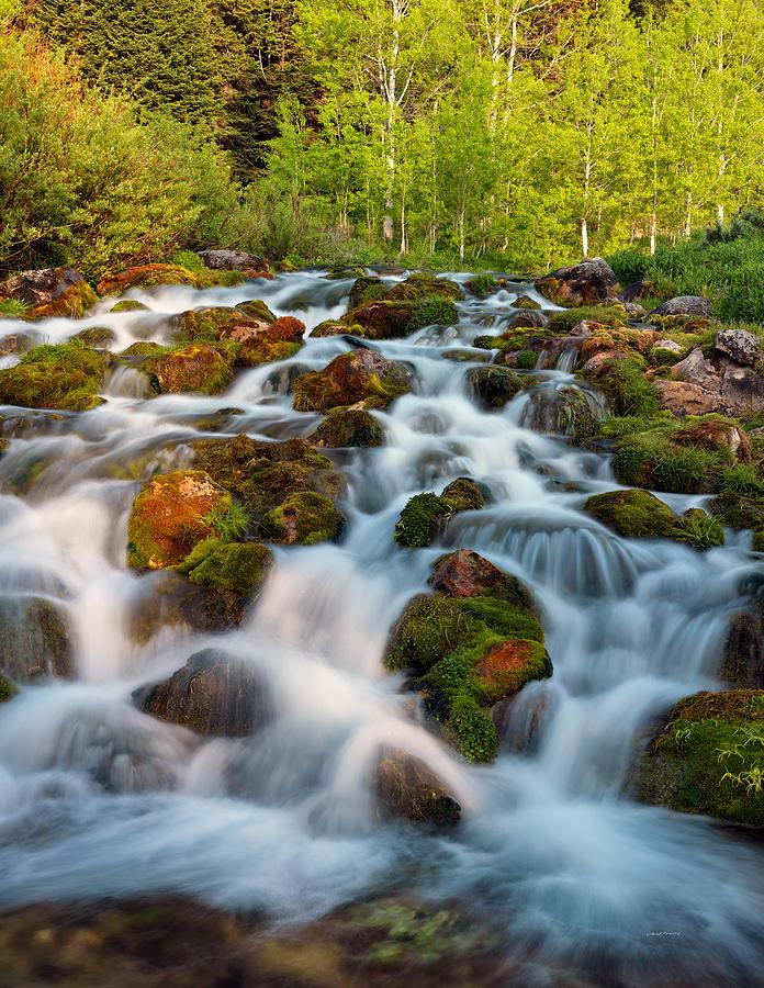 Spring Cascade Photograph