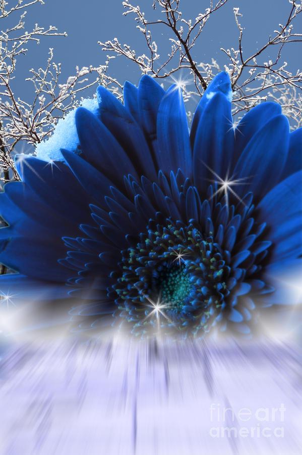 Spring Emergence  Digital Art