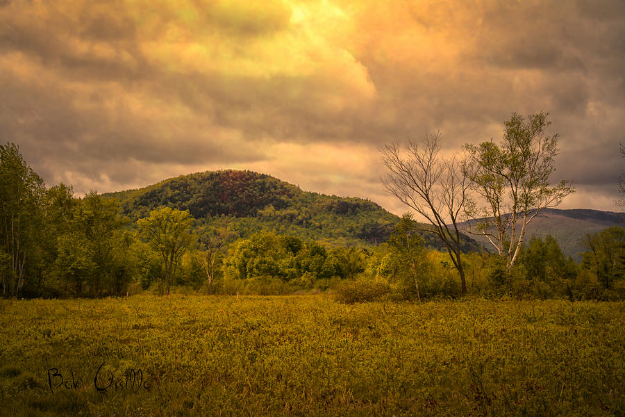Spring Rain - White Mountains -maine Photograph  - Spring Rain - White Mountains -maine Fine Art Print