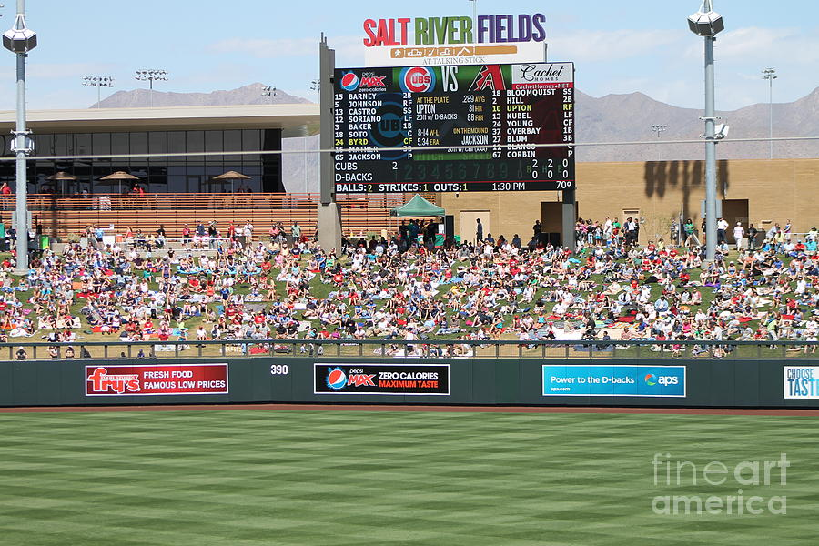Spring Training 12-4-9 Photograph  - Spring Training 12-4-9 Fine Art Print
