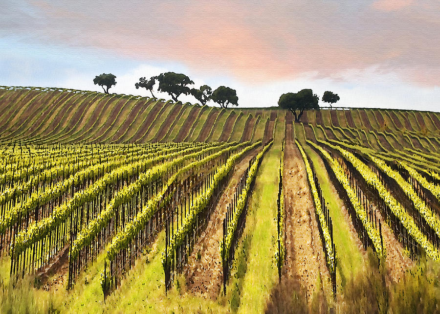 Spring Vineyard Digital Art