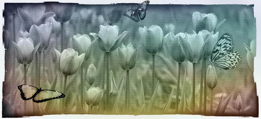 Photoshop Digital Art - Springtime by Marie  Gale