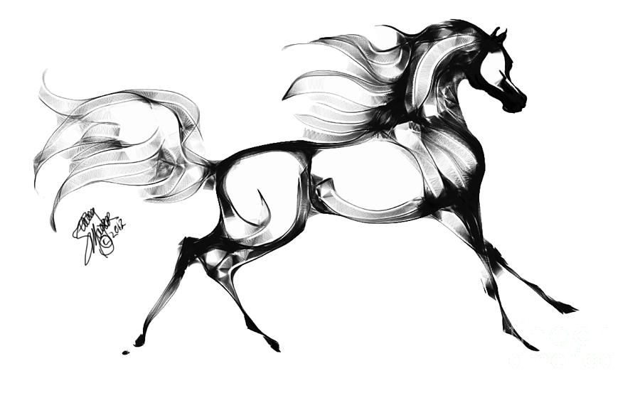 Line Drawing Horse Tattoo : Staceys arabian horse by stacey mayer