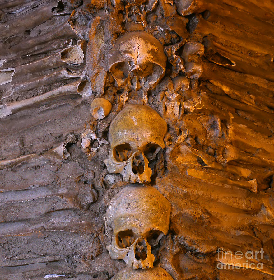 Stacked Human Bones Photograph by Manuel Fernandes