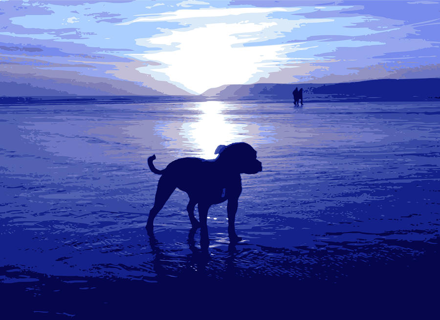 Staffordshire Bull Terrier On Beach Digital Art  - Staffordshire Bull Terrier On Beach Fine Art Print