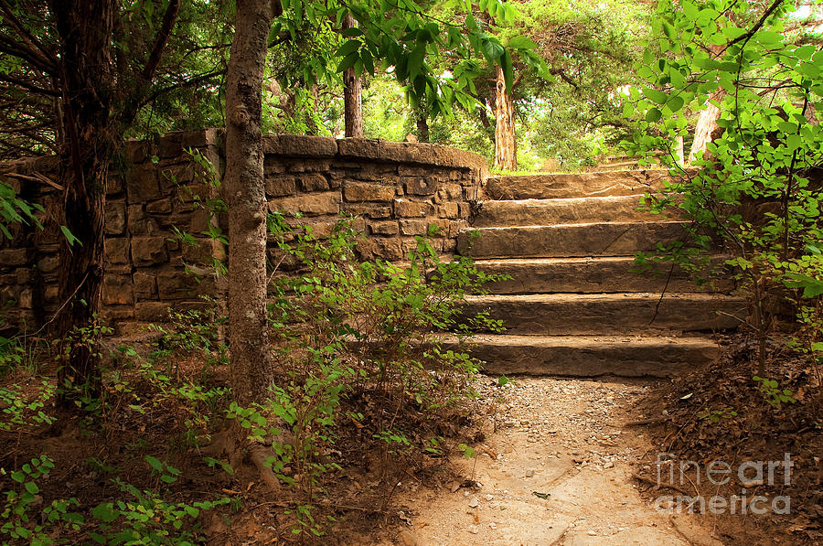 Stairway To Solitude Photograph  - Stairway To Solitude Fine Art Print