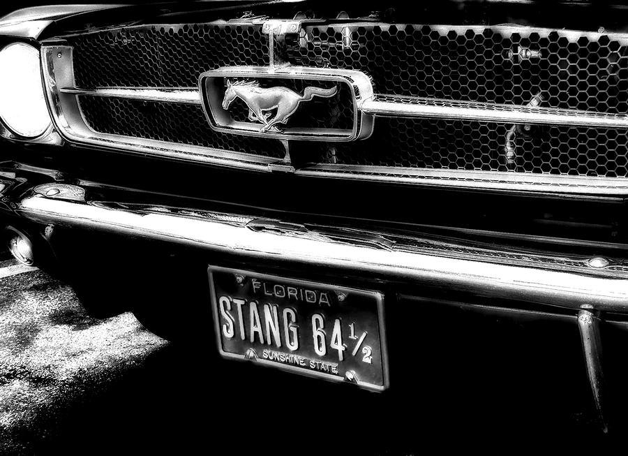 Stang Photograph