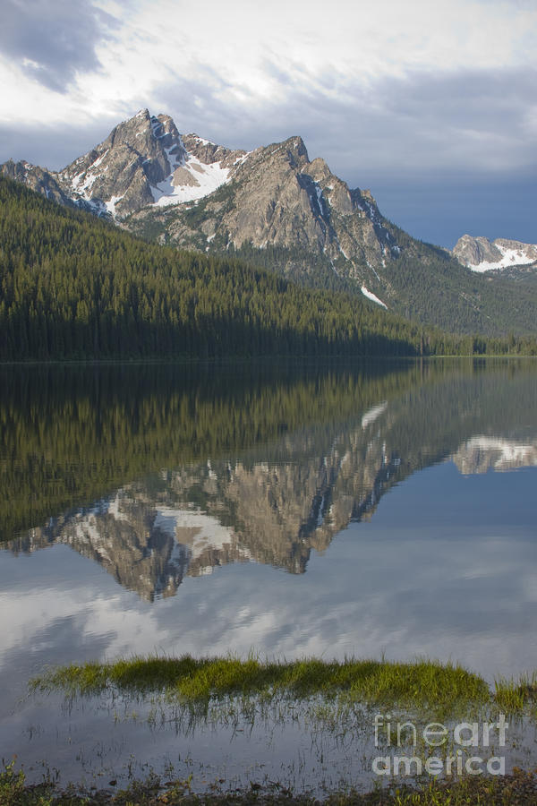 Stanley Lake Reflections Photograph  - Stanley Lake Reflections Fine Art Print