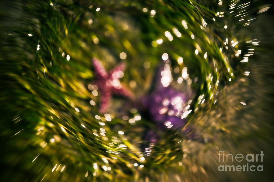Starfish Swirl Photograph