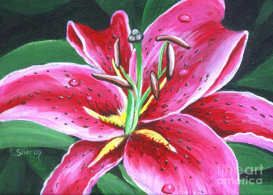 Stargazer Lily Painting By Sharon Molinaro