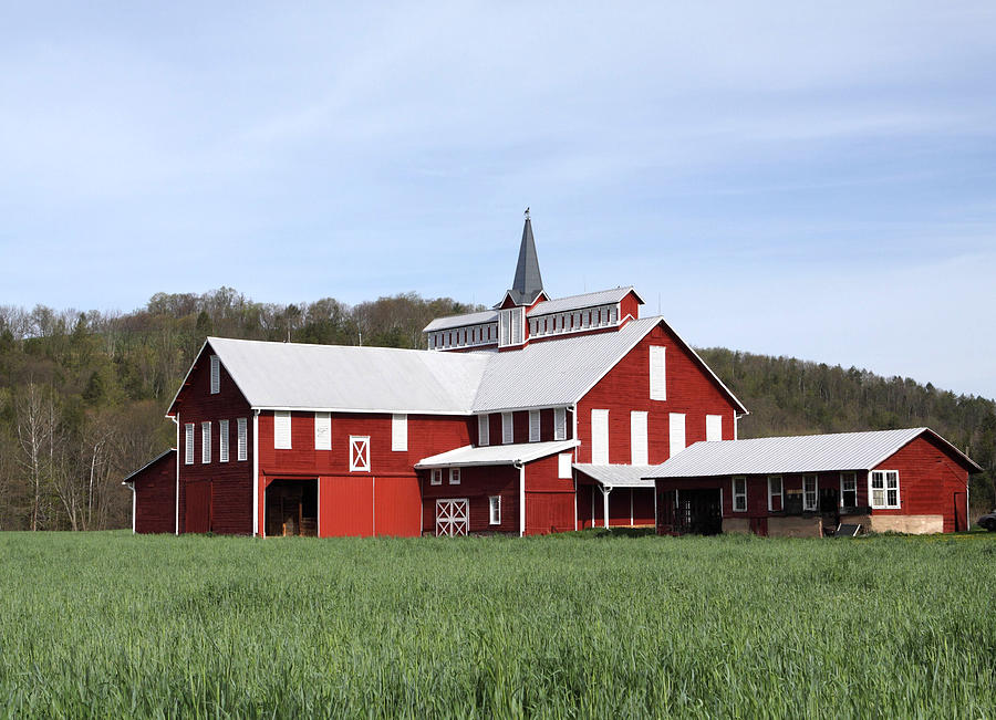 Stately Red Barn With Elongated Clerestory Cupola Photograph  - Stately Red Barn With Elongated Clerestory Cupola Fine Art Print