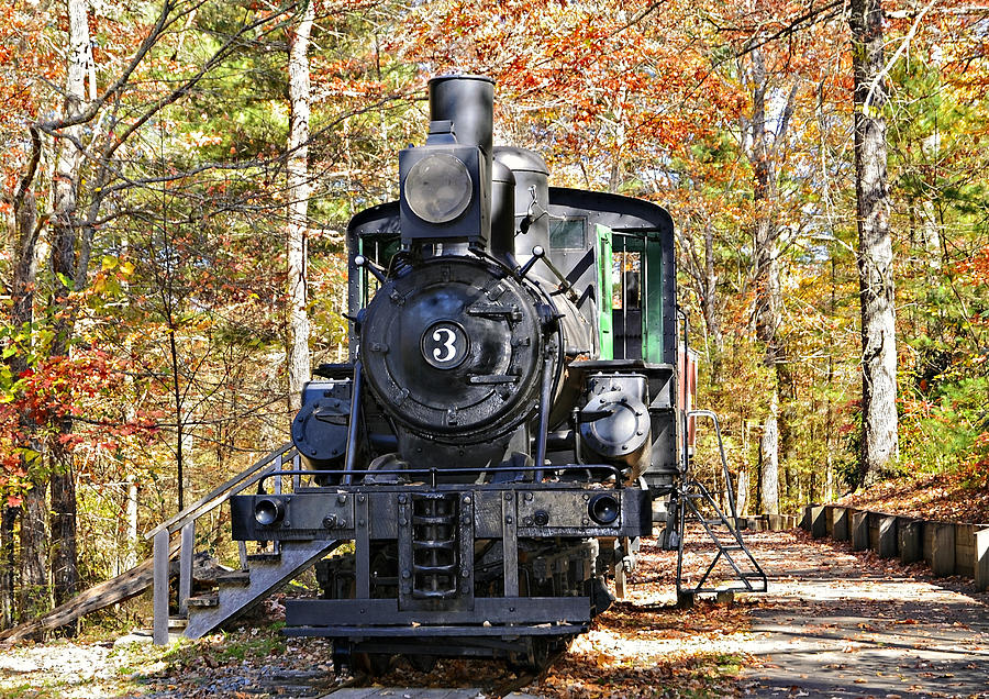 Steam Locomotive On Display Photograph