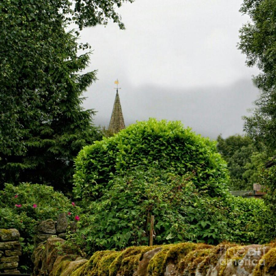 Hedge Photograph - Steeple by Isabella F Abbie Shores FRSA