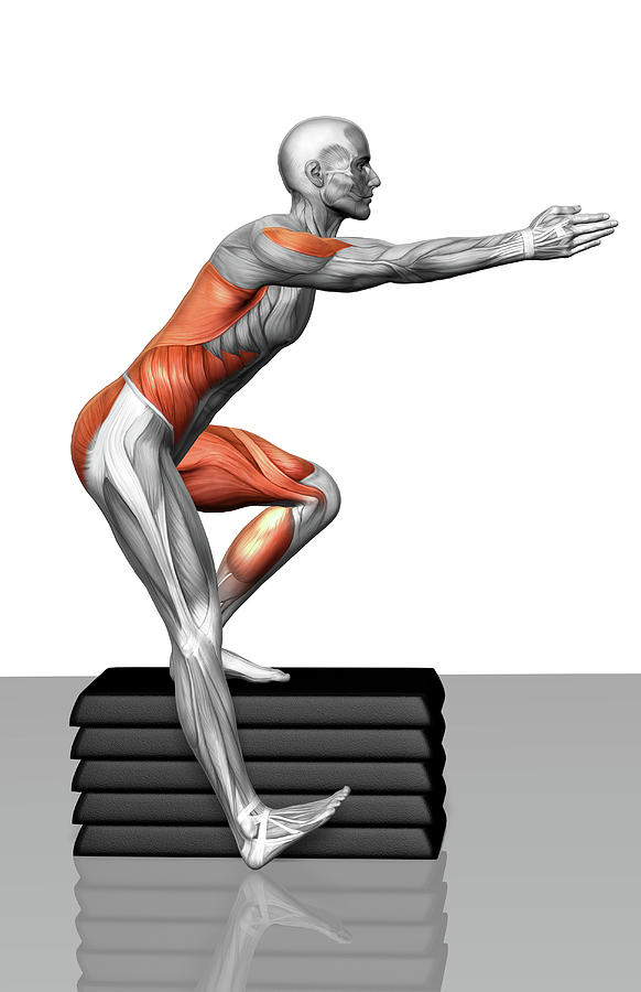 Vertical Photograph - Step-down Exercises by MedicalRF.com