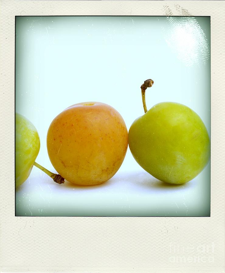 Still Life With Plums. Photograph