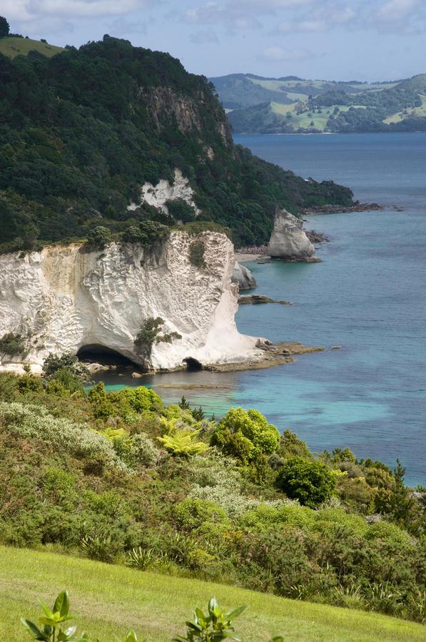 Stingray Cove Photograph