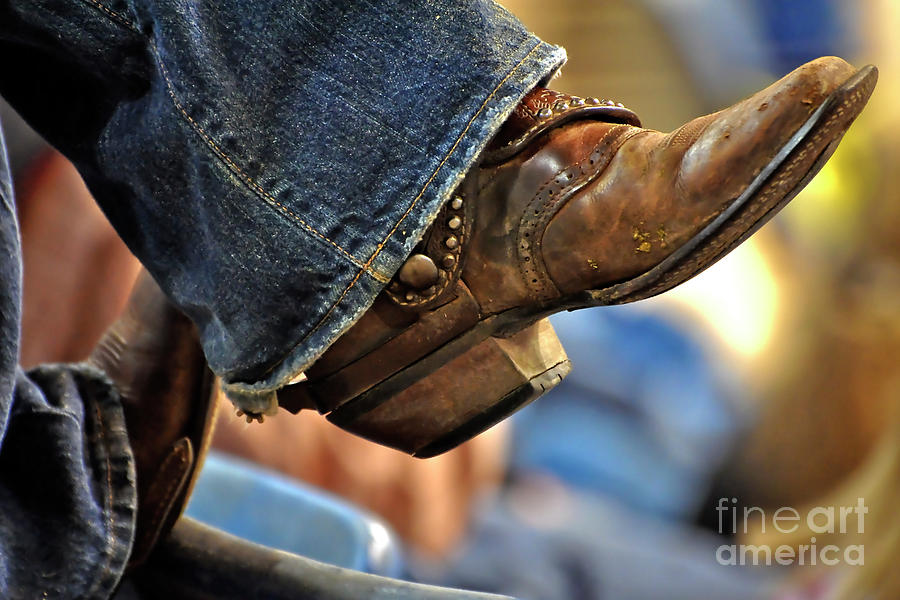 Stock Show Boots I Photograph