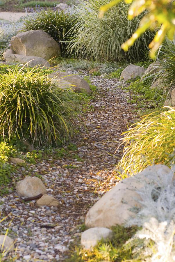 Usa Photograph - Stone Path Through Garden by James Forte