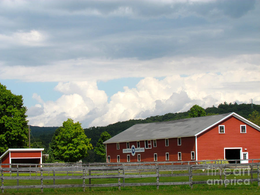 Stone Pony Farm Photograph  - Stone Pony Farm Fine Art Print