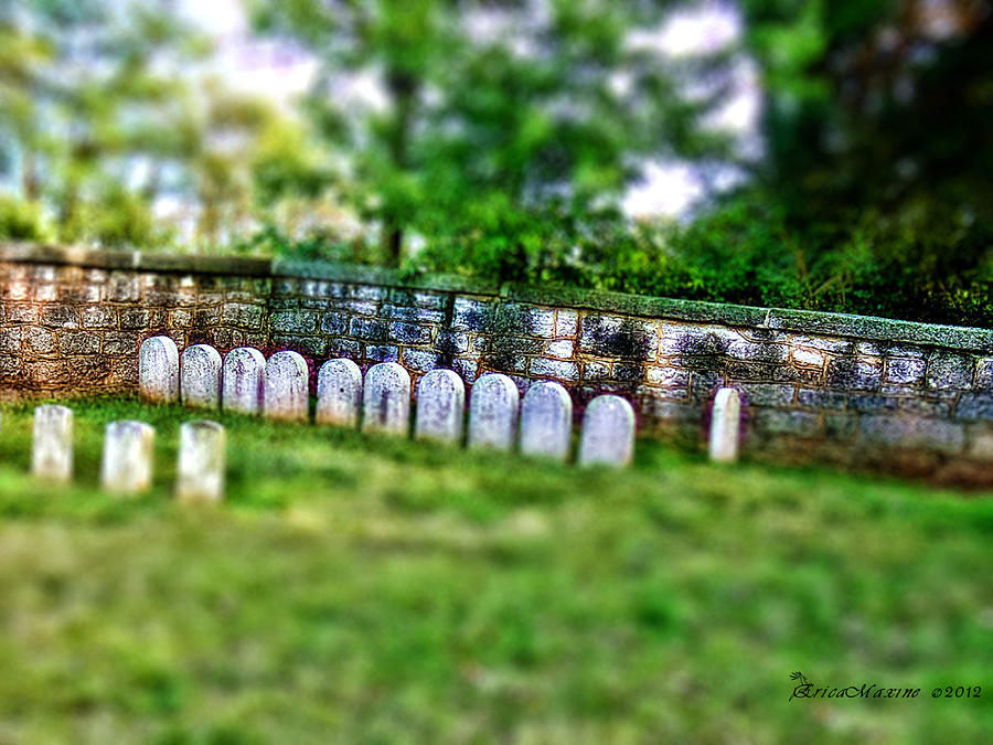 Stones River Battlefield Photograph - Stones River Battlefield by EricaMaxine  Price