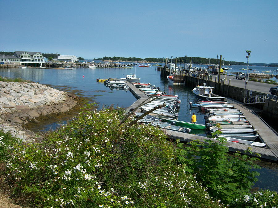 Stonington Dock Photograph