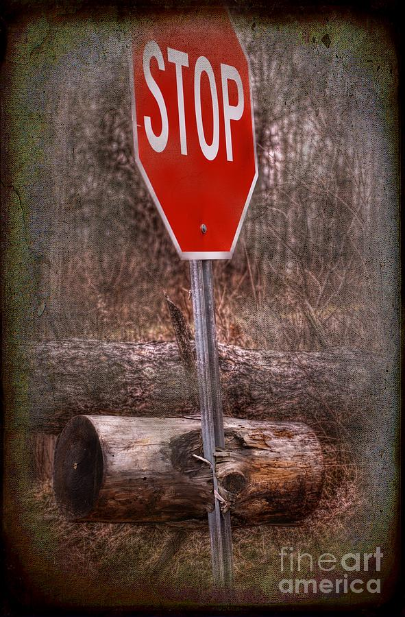 Stop Firewood Transport Photograph  - Stop Firewood Transport Fine Art Print