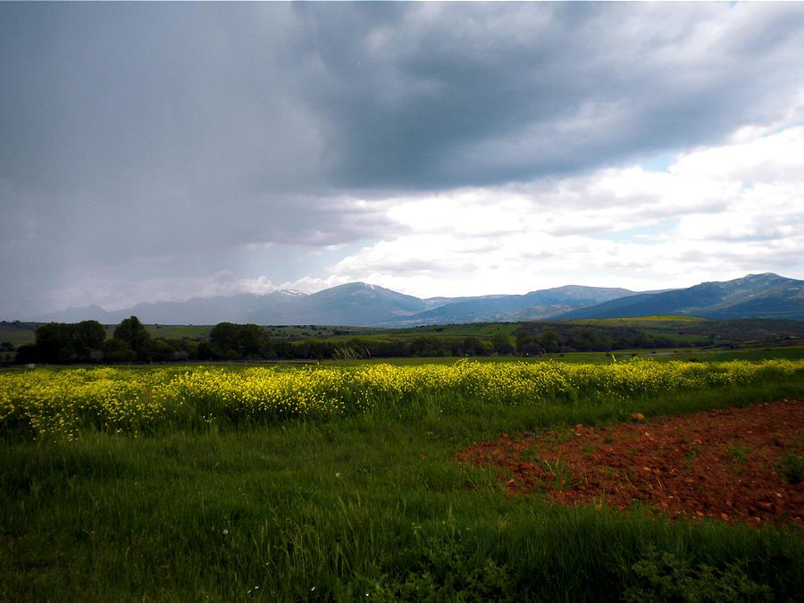 Storm Comes Photograph
