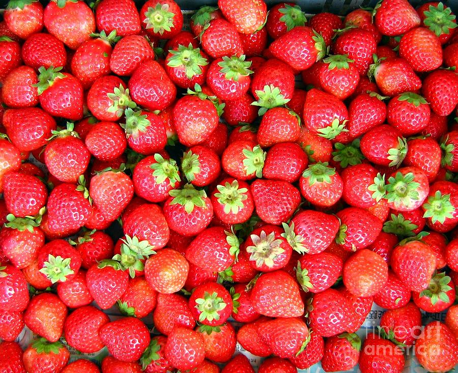 Strawberries  Photograph  - Strawberries  Fine Art Print