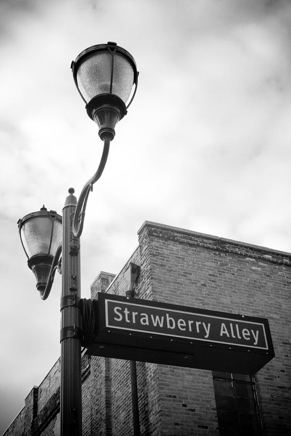 Strawberry Alley Photograph  - Strawberry Alley Fine Art Print