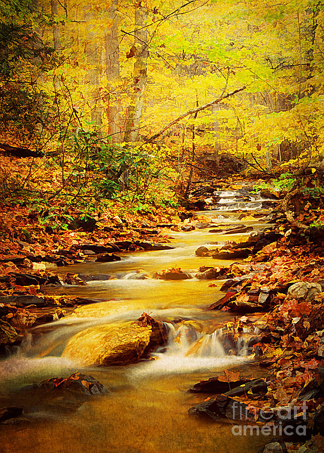 Texture Photograph - Streams Of Gold by Darren Fisher