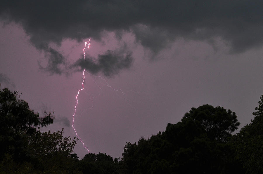 Lightning Photograph - Striking by Tazz Anderson