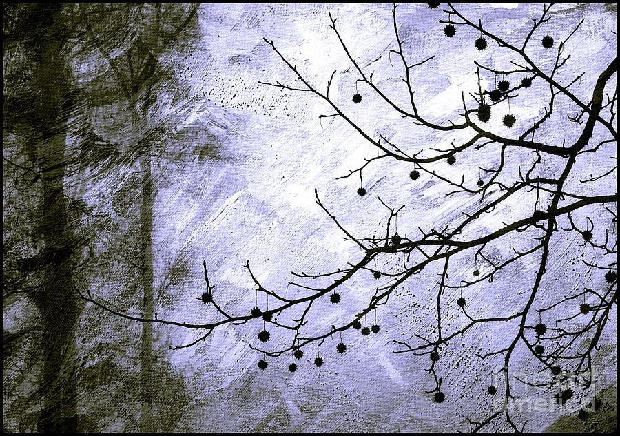 Sudden Snowstorm Photograph