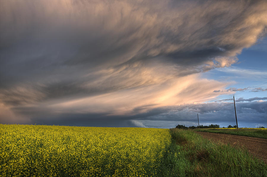 Summer Evening Storm Blowing Over Ripe Photograph  - Summer Evening Storm Blowing Over Ripe Fine Art Print