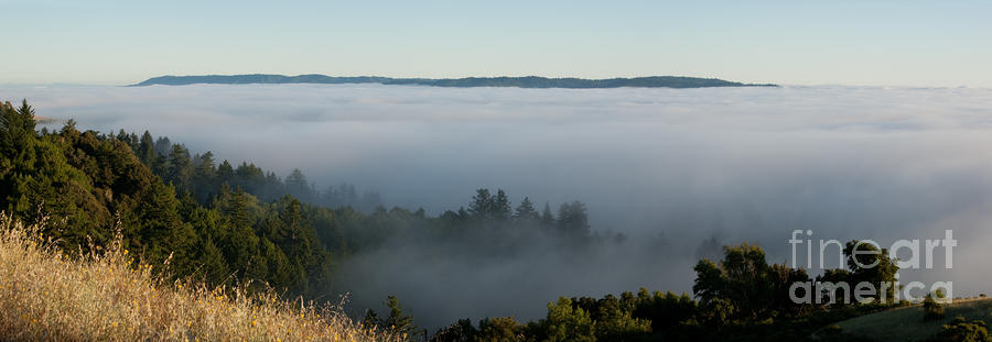Summer Fog Rolls In Photograph