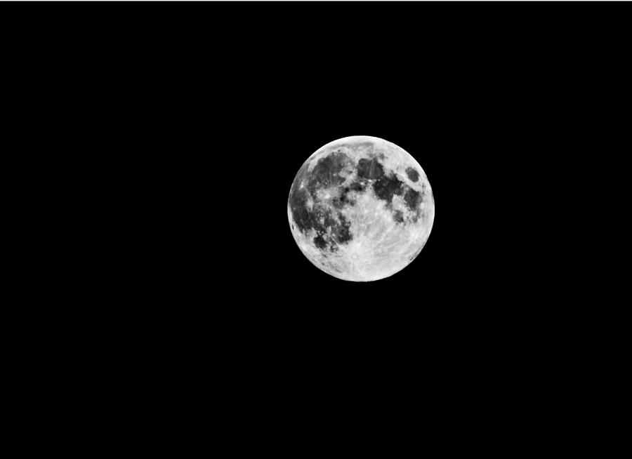 Summer Moon Photograph