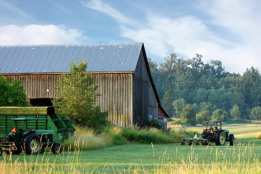 Summer On The Farm Photograph