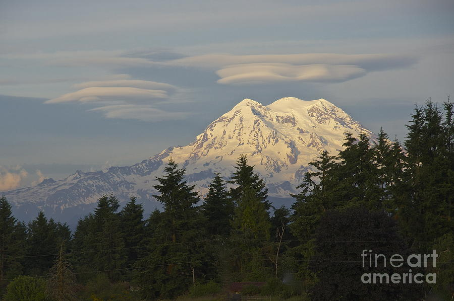 Summer Solstice - Mount Rainier Photograph  - Summer Solstice - Mount Rainier Fine Art Print