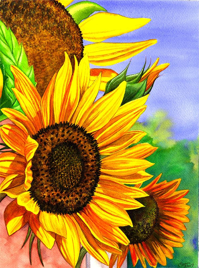Summer Sunflowers by Catherine G McElroy