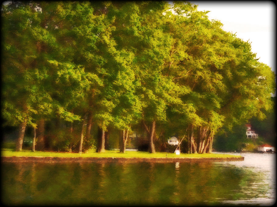 Summer Trees Lake Hopatcong Photograph
