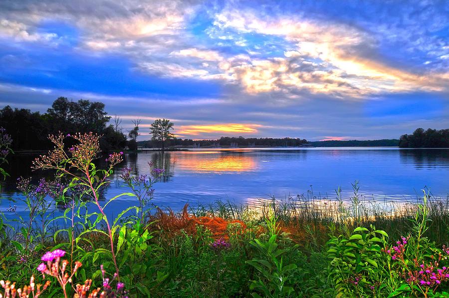 Summer time ... Summertime-walk-around-lake-randall-branham