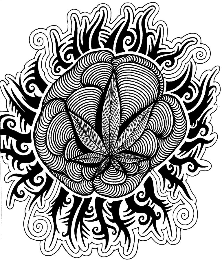 Sun Drawing By Andrew Padula Trippy Pot Leaf Coloring Pages