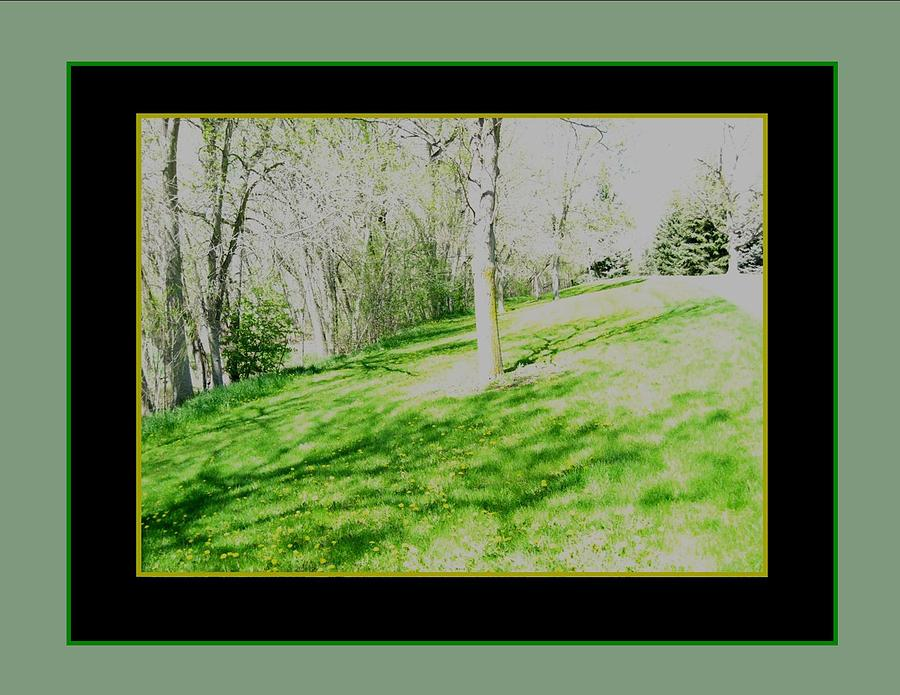 Sun Day Grayed Framed In Black And Green Photograph