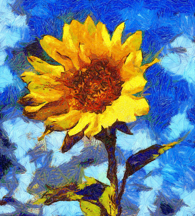 Sun Flower Digital Art  - Sun Flower Fine Art Print