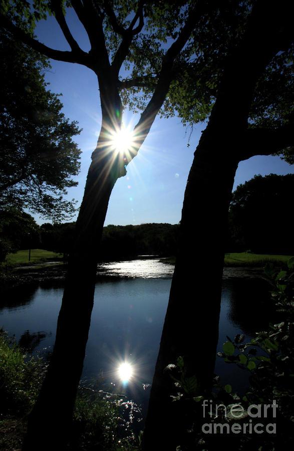 Sun Reflect Photograph