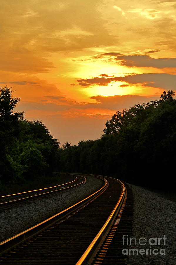 Sun Reflecting On Tracks Photograph