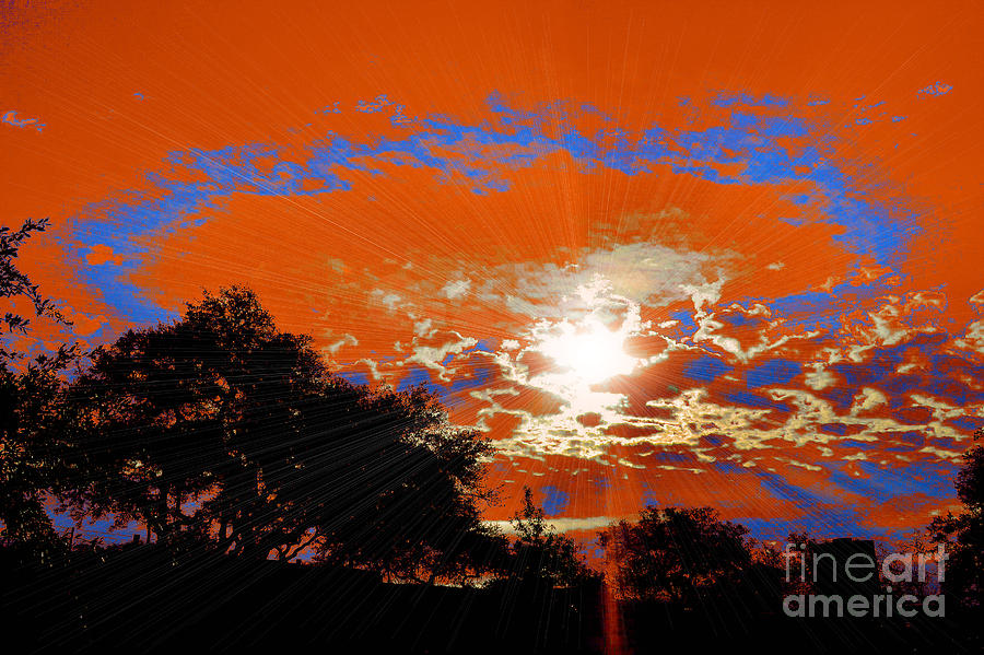 Sunburst Photograph  - Sunburst Fine Art Print